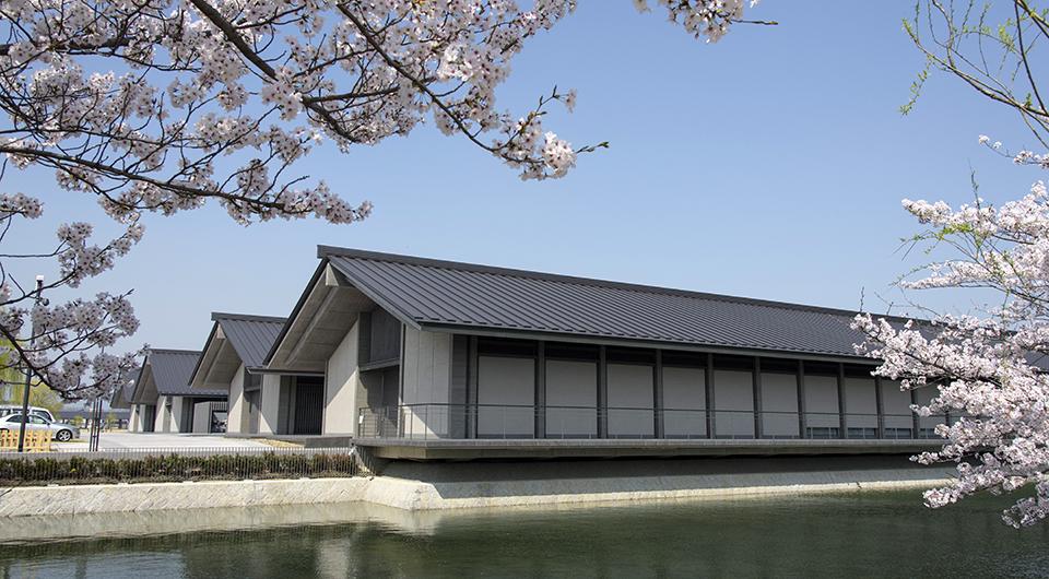 奈良平城宮跡歴史公園 朱雀門ひろば