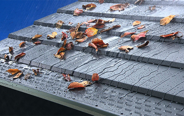 「元旦雨樋」落葉と水「引き」